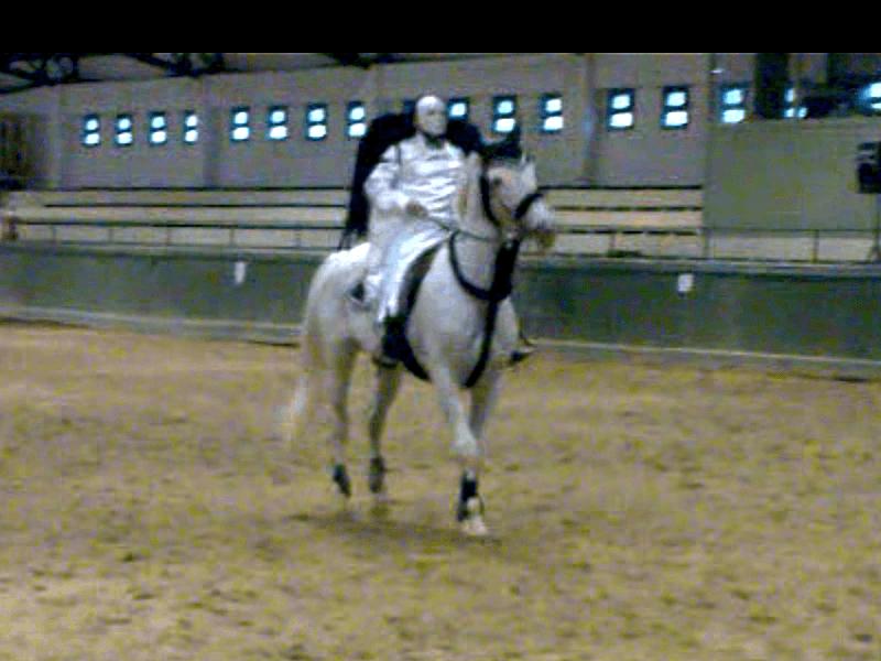 Танец лошади