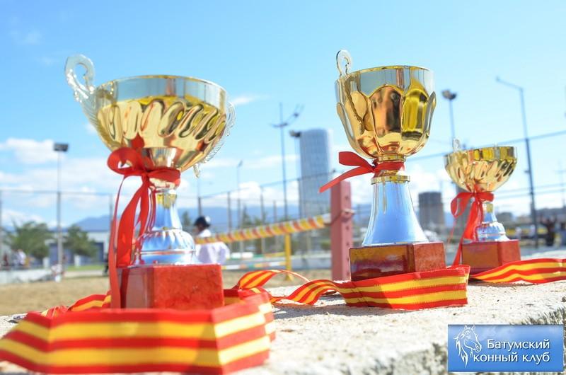 Батуми соревнования конкур